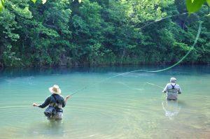 BENNETT-SPRING-FREE-FISHING